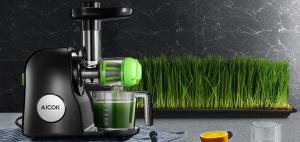 best-cold-press-juicer-for-celery